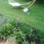 Arc Hammock stand by herb garden