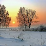 winter-scene-snow-sun-trees-winter
